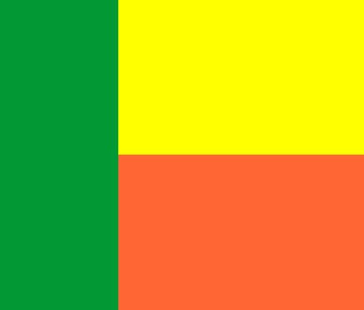 Benin Flag - My Evil Twin