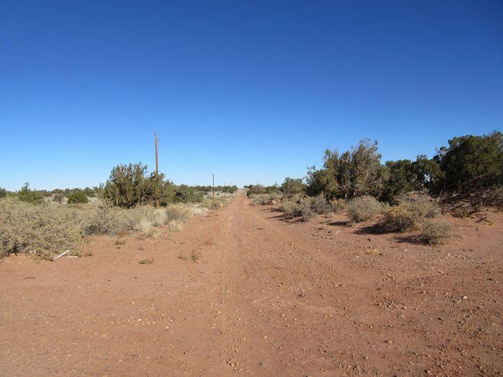 Arizona Road - My Evil Twin