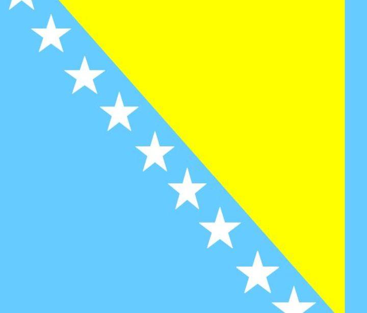 Bosnia & Herzegovina Flag - My Evil Twin