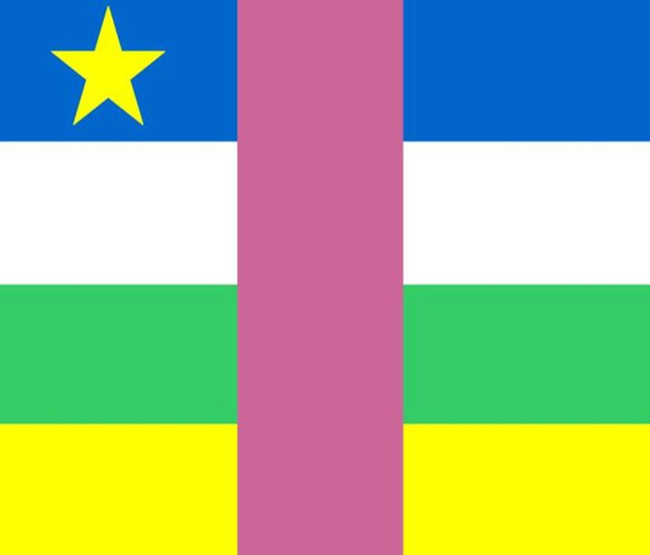 Central African Republic Flag - My Evil Twin