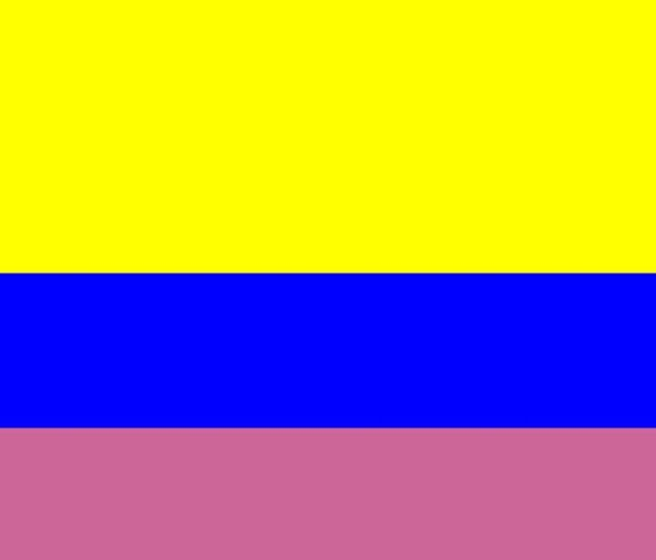 Colombia Flag - My Evil Twin