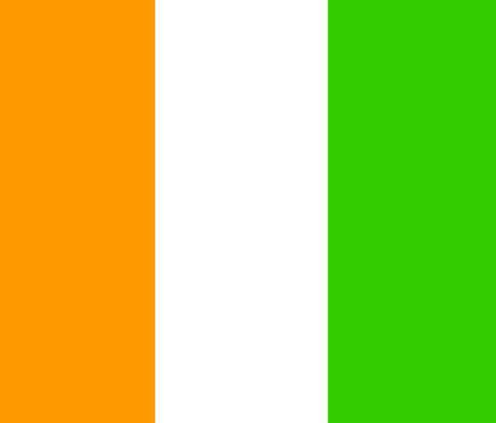 Cote D'Ivoire Flag - My Evil Twin