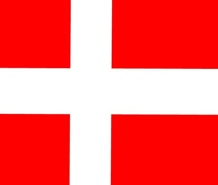 Denmark Flag - My Evil Twin