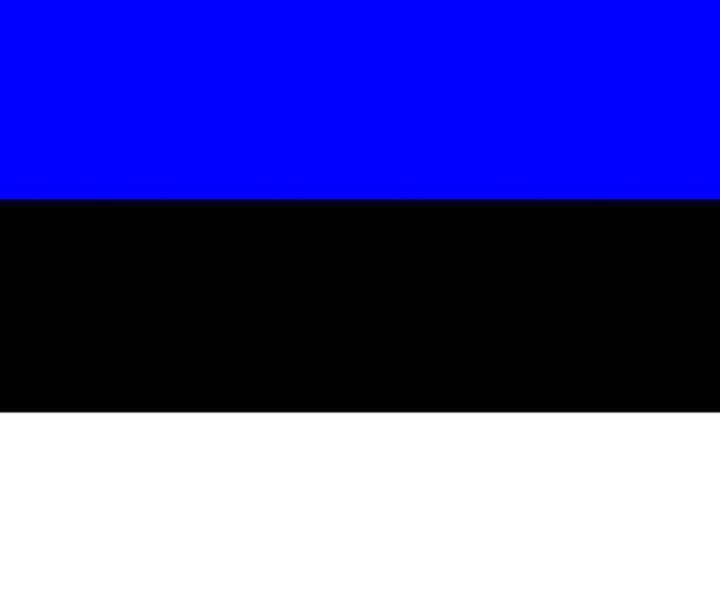 Estonia Flag - My Evil Twin