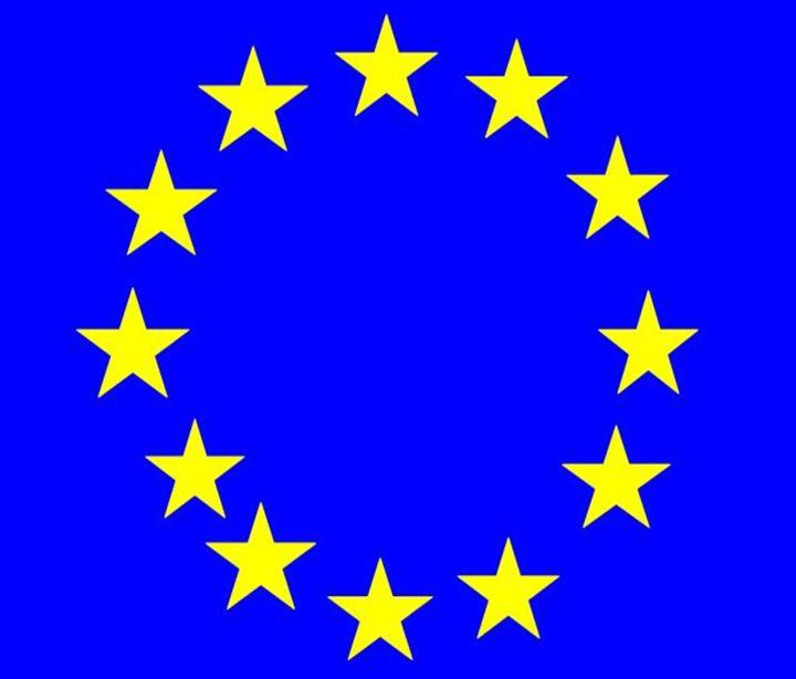 European Union Flag - My Evil Twin