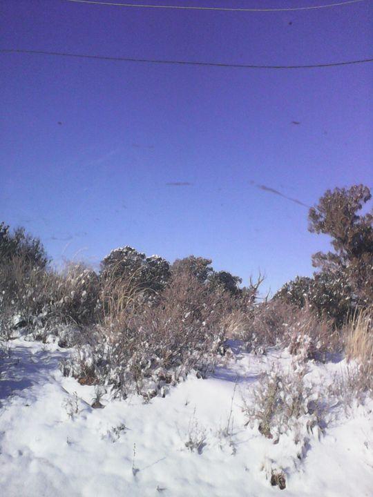 Desert Winter - My Evil Twin