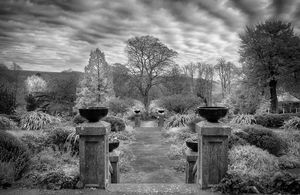 Bedwelty Park in greyscale