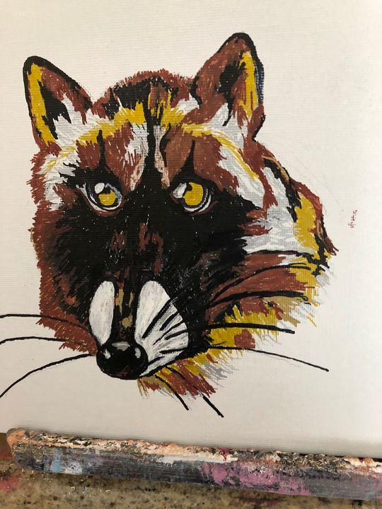 Raccoon - Sallylu of Noah's Art