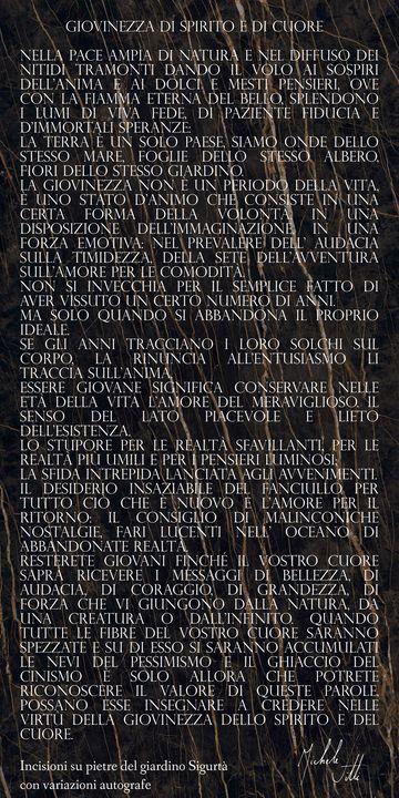La pietra della giovinezza. - Michele Vitti