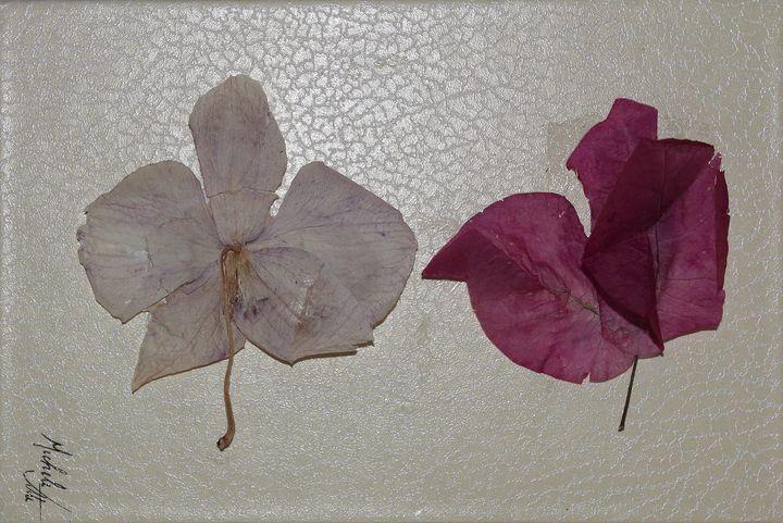 Old flowers - Michele Vitti