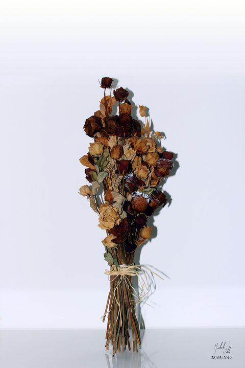Old roses - Michele Vitti