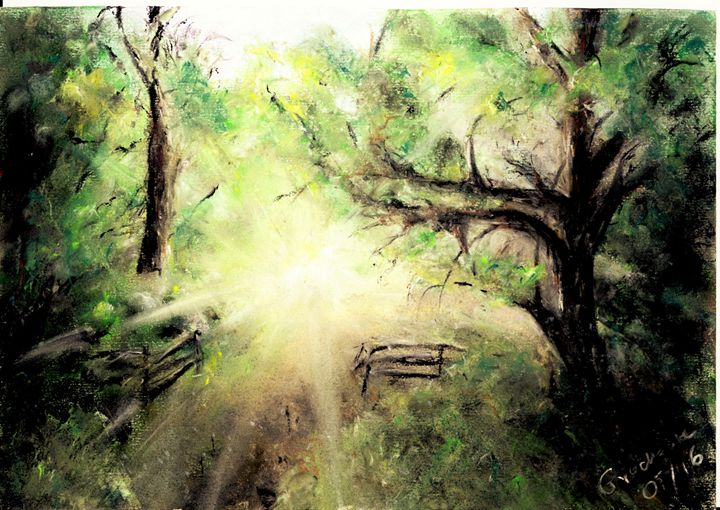 Sunrise in Swithland Wood - Catherine Grochowska