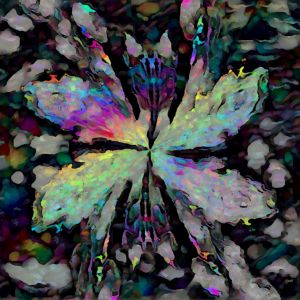 THE FLUORESCENT BUTTERFLY