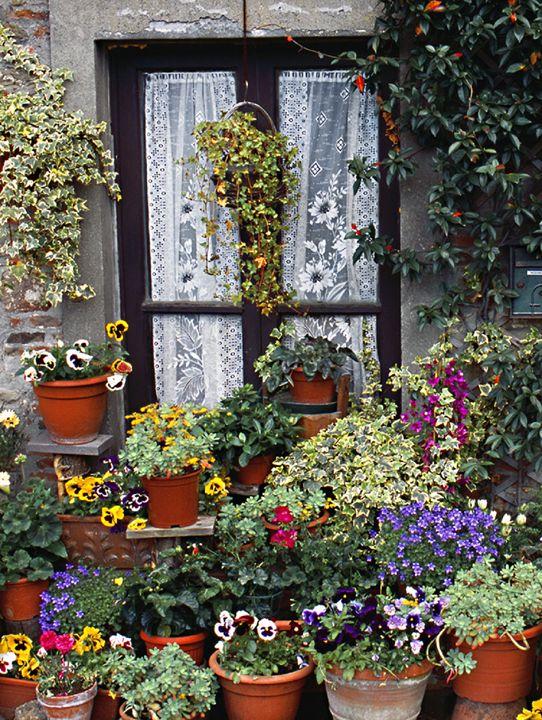 Mama's Garden - Signs Of Life USA