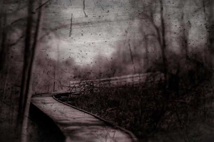 Forest: 50s vibe - Darko Art & Design/Photography