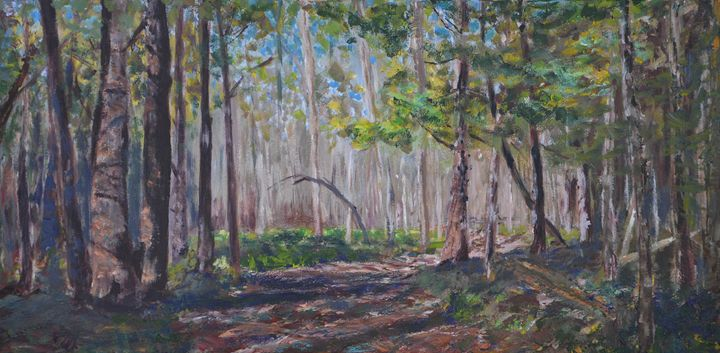 Kanata Arboretum Trail - John Kittson
