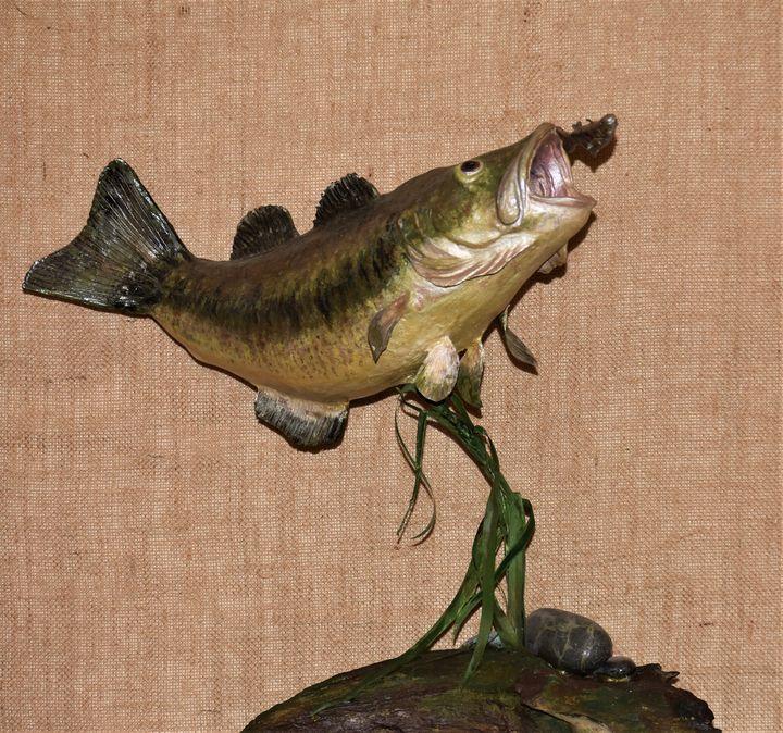 Large Mouth Bass Catching Minnow - Hoagland Animal Art