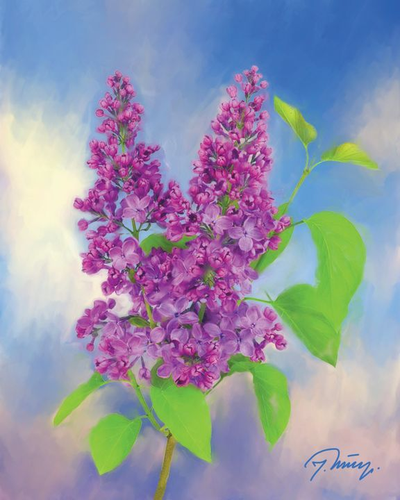 The branch of lilac - Jovica Petrovic Art