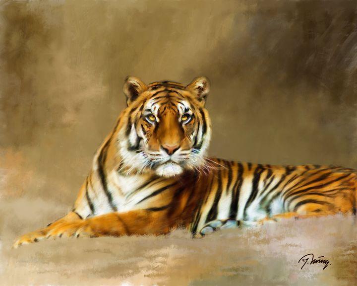 Tiger - Jovica Petrovic Art
