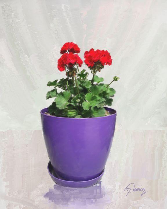 Crvene Muškatle - Jovica Petrovic Art