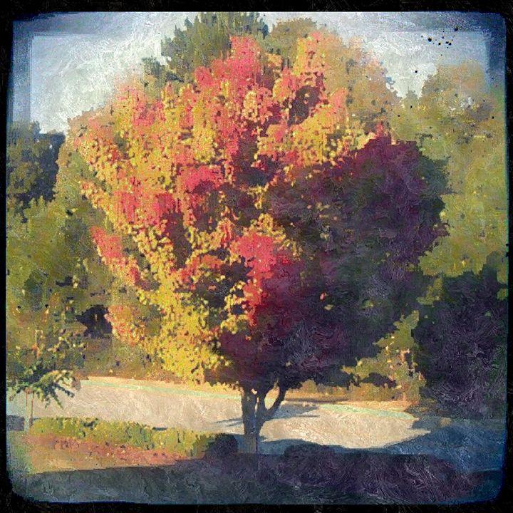 Autumn Sun - Jay Makario