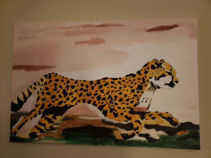 Le Cheetah - Mucchiani