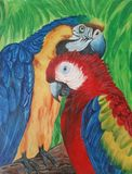 Acrylic painting on canvas of macaw