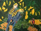 Original paintings of amazon parrots