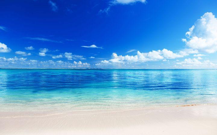 Tropical Beach - 3D Elements