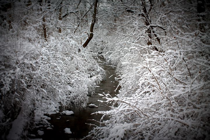 Snowy Creek - 5 Angels Photography
