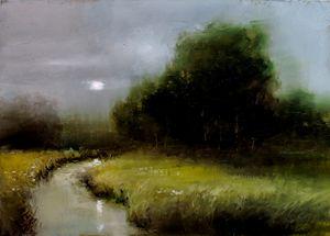 Wetlands Twilight