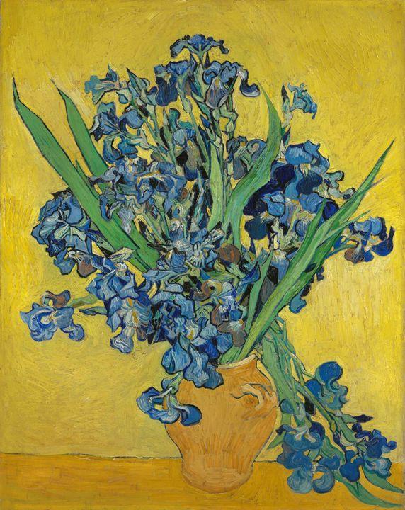 Vincent Van Gogh Irises Alexandra Luiza Dahl Paintings