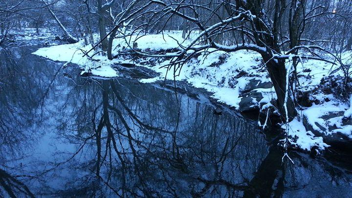 Winter Creek Reflection - William Slider