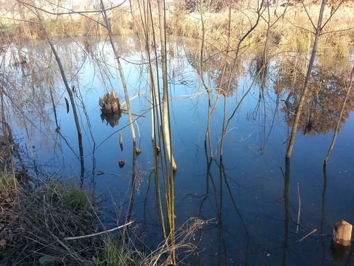 Sky Pond 01 - William Slider