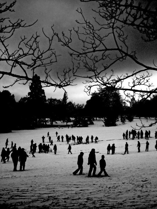 Winter park - Steve Ball