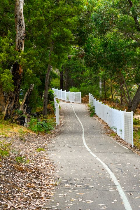 Country Walking Path - J & A Photography