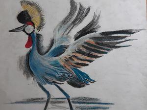 The cranebird