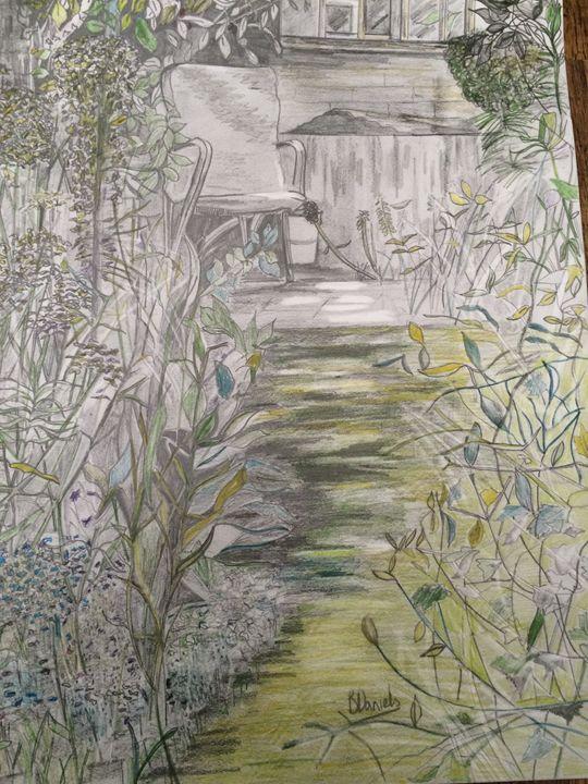 Summer Garden - Barbara Daniels