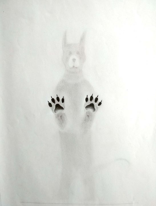 A dog standing on glass wall - Gopinath lb