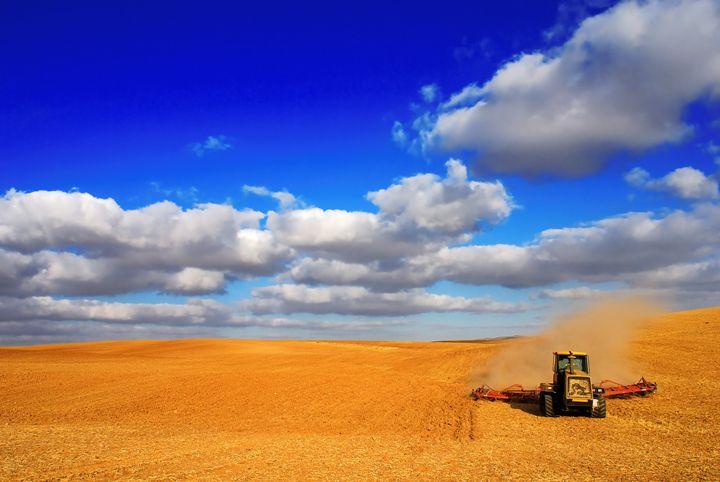 wheat Harvesting - PhotoStock-Israel