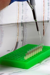 DNA research - PhotoStock-Israel