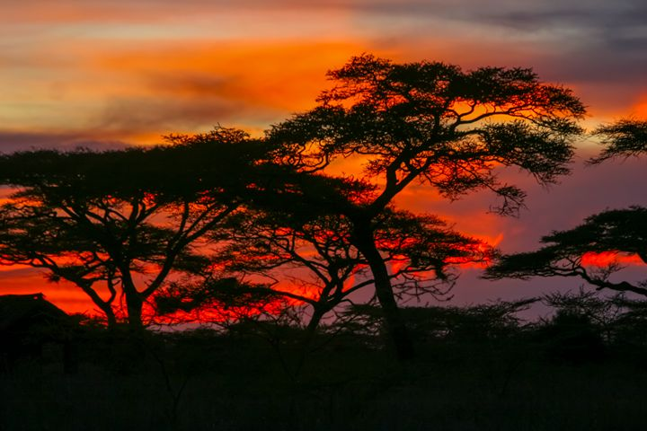 Red African Sunset - PhotoStock-Israel