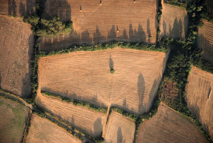 Spain, Catalonia, agriculture - PhotoStock-Israel