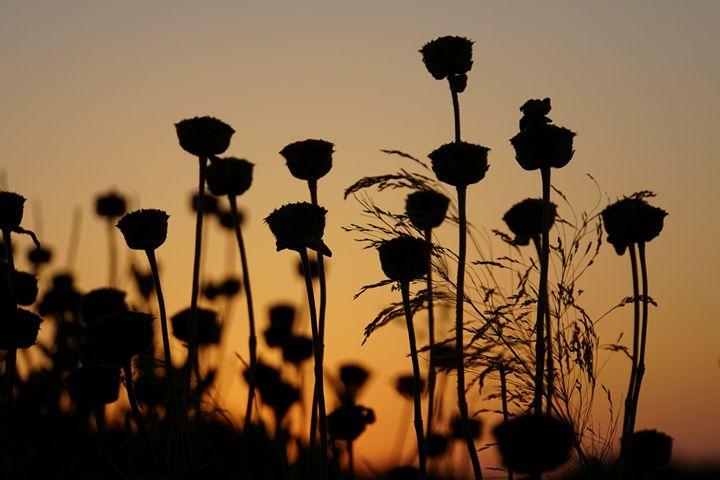 Mediterranean Sunset in Crete, Greec - PhotoStock-Israel
