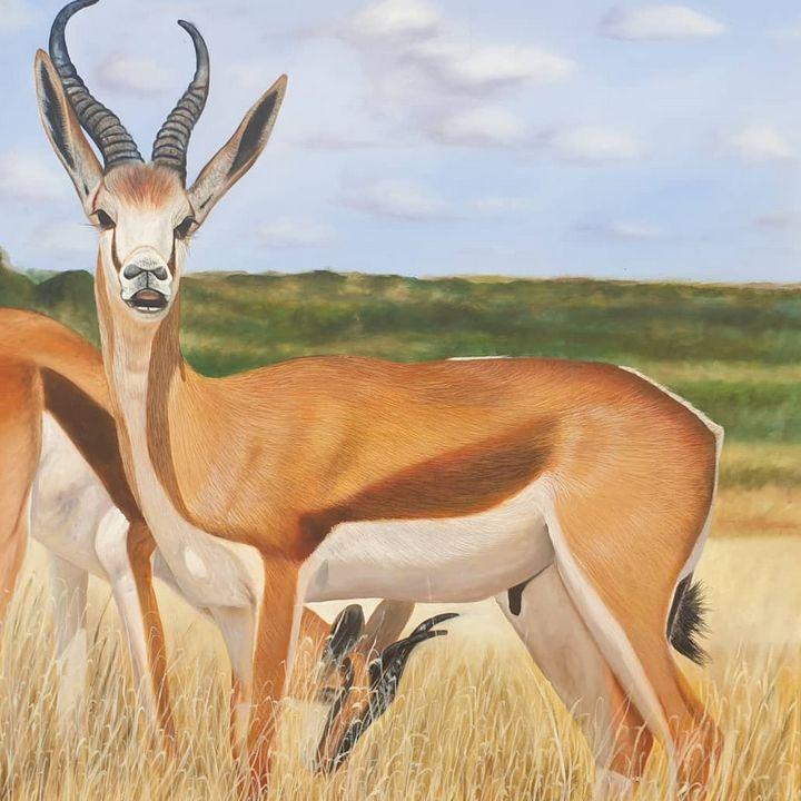 South African Springbok - Menard art