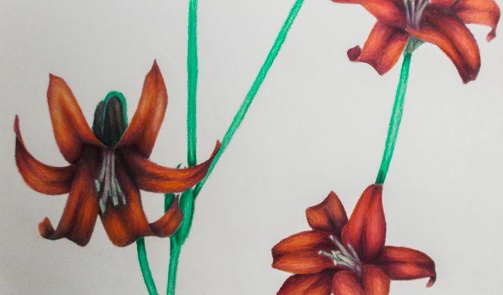 lively lilies - Katie Golabowski