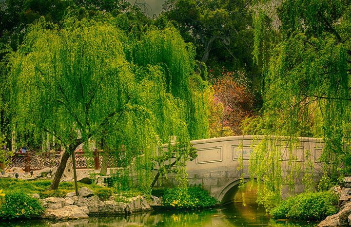 Chinese Garden - LUXNV