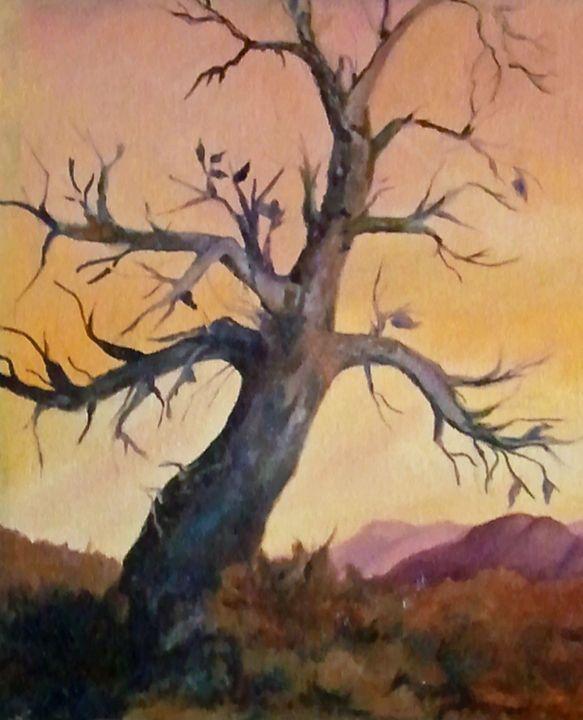 Scottsdale Tree - Paintings by Jennifer Redman Wadsworth