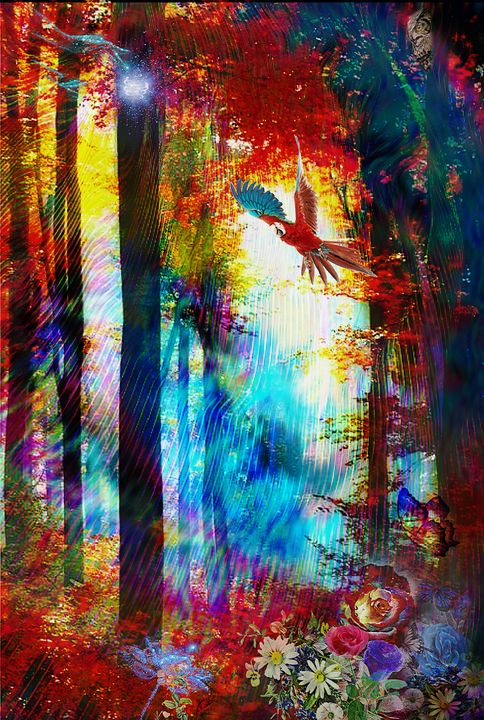 Macows paradise - CMT  GRAVITY  DESIGNS