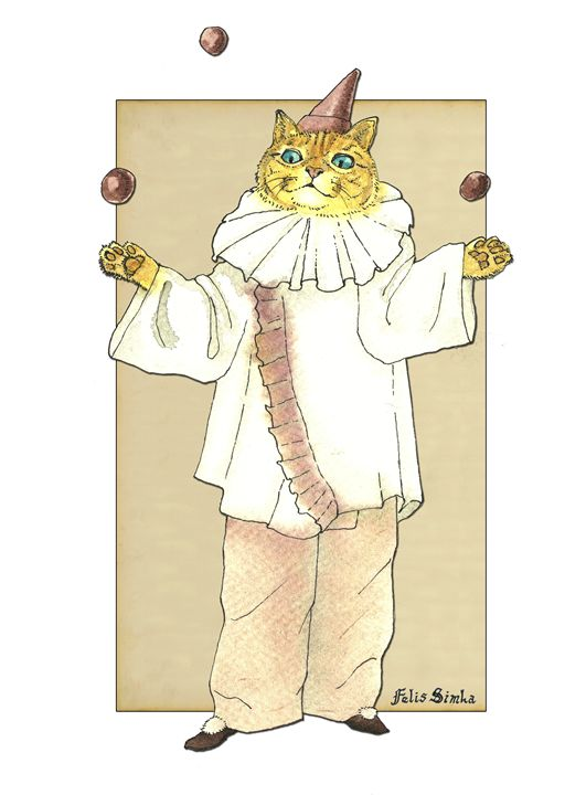 Clown Cat - Felis Simha